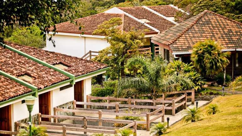 Montaña Monteverde